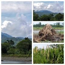 Costa Rican Views 2