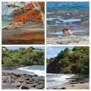 Playas de Ocotal